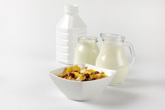Oat flakes with milk and white yogurt Stock Photography
