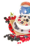The oat flakes porridge with berries. The oat flakes with berries porridge  isolated on white background Royalty Free Stock Images