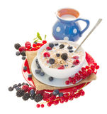 The oat flakes porridge with berries and milk. The oat flakes with berries and milk  isolated on white background Stock Images
