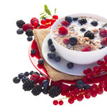 The oat flakes with red and blue berries Royalty Free Stock Images