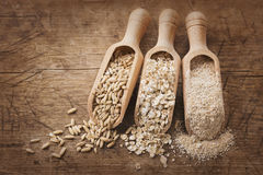 Oat flakes, seeds and bran Royalty Free Stock Photo