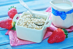 Oat flakes Royalty Free Stock Photography