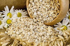 Oat flakes in a wooden bowl with chamomiles Royalty Free Stock Image