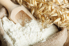 Oat flour Royalty Free Stock Photography