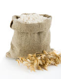 Oat flour Stock Image