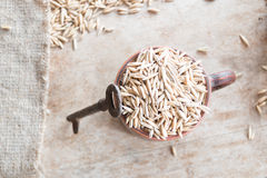 Oat grain Stock Image