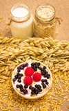 Oat grain and oatmeal with fresh fruits Royalty Free Stock Photography