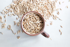 Oat grain Royalty Free Stock Photos
