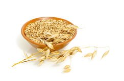 Free Oat Grains Royalty Free Stock Image - 18991736