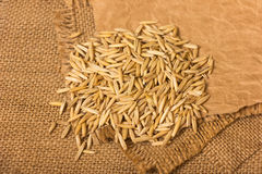Oat grains Royalty Free Stock Image