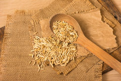 Oat grains Royalty Free Stock Photography