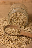 Oat grains in a jar Royalty Free Stock Image