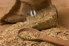 Oat grains in a jar Royalty Free Stock Photography