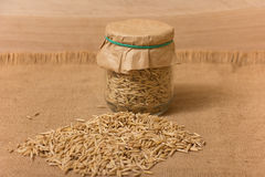 Oat grains in a jar Stock Images