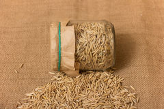 Oat grains in a jar Royalty Free Stock Photos