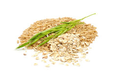 Oat Grains, Oat Flakes And Ear royalty free stock images
