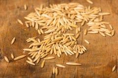Oat grains Stock Photo