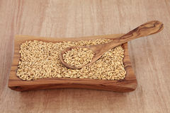 Oat Groats Royalty Free Stock Photography