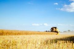 Oat harvesting on fields Stock Photos