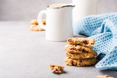 Oat meal cookies with raisins and cranberries Royalty Free Stock Photography