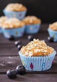 Oat muffins with blueberries. On a dark wooden background Royalty Free Stock Photos