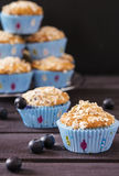 Oat muffins with blueberries. On a dark wooden background Royalty Free Stock Images