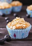 Oat muffins with blueberries. On a dark wooden background Royalty Free Stock Image