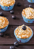 Oat muffins with blueberries. On a dark wooden background Stock Photos