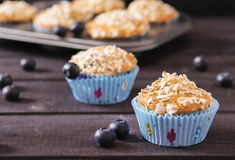 Oat muffins with blueberries. On a dark wooden background Stock Images