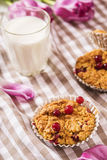 Oat muffins with cranberries. With a glass of milk and a bouquet of flowers on a checkered napkin Royalty Free Stock Images