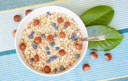 Oat nuts with blueberries Stock Images