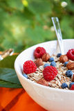 Oat nuts breackfast Royalty Free Stock Images