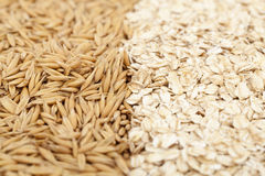 Oat and oatmeal Stock Photography