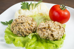Oat Patty with vegetables, tomato and mashed potatoes. Laid out on a white plate, decorated with greenery Royalty Free Stock Photography