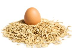 Oat pile and egg Stock Photo