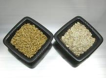 Oat and porridge Royalty Free Stock Photos