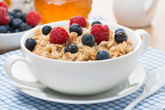 Oat porridge with berries Stock Images