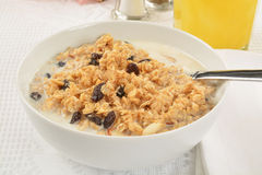 Oat and raisin granola Stock Images