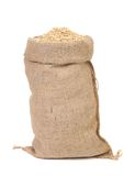 Oat seed grain in burlap sack bag Royalty Free Stock Image
