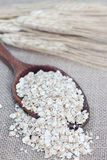 Oat seeds Royalty Free Stock Photography