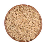 Oat seeds in a wooden bowl Stock Images