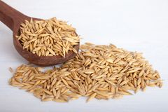 Oat seeds in wooden spoon on white background, top view royalty free stock photo