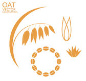 Oat. Set. Vector illustration (EPS 10 Royalty Free Stock Images