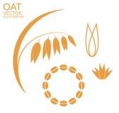 Oat. Set. Vector illustration (EPS 10 Royalty Free Stock Images