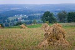 Oat Shocks in Field II. Oat shocks in field overlooking farm in valley Stock Images