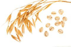 Oat spike with oat flakes isolated on white background. Top view.  Stock Photo