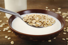 Oat in spoon Royalty Free Stock Photo