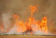 Oat Stubble Fire Stock Photo