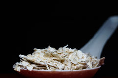 Oat in a white spoon stock images