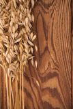 Oat on wood Stock Photography